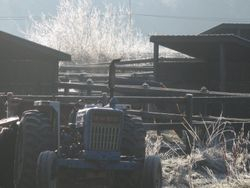 Tractor probably won't start in weather this cold.