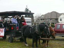 Mary's wagon