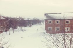 Locking in Snow 1978
