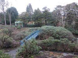 Johnson Garden 2