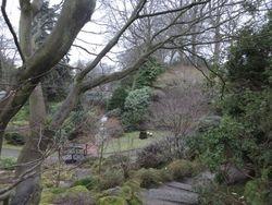 Johnson Garden 3