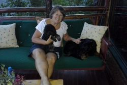 Front Porch with the Furbabies