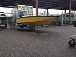 Raysoncraft PFS starboard quarter view