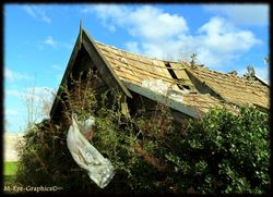 """Abandoned Cottage """"O"""""""