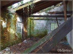 Abandoned Bunker House