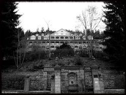 Abandoned Hospital Garden001