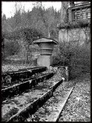 Abandoned Hospital Garden008