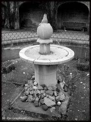 Abandoned Hospital Garden010