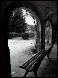 Abandoned Hospital Garden011