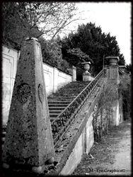 Abandoned Hospital Garden016