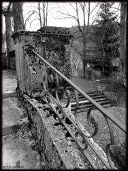 Abandoned Hospital Garden018