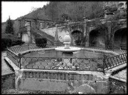 Abandoned Hospital Garden019