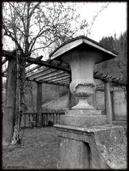 Abandoned Hospital Garden024