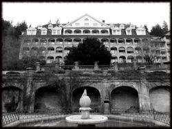 Abandoned Hospital Garden028