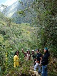Rain forest in Machu Picchu District!