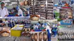 Soft Shell Crab(seafood)Mr Yee Hlaing,Yangon,Myanmar,Asia