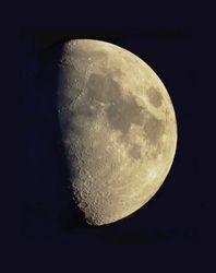 Moon Mozaic
