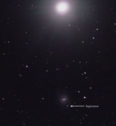 M95 with supernova