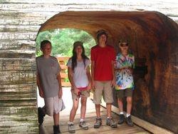Kids in Tunnel Tree
