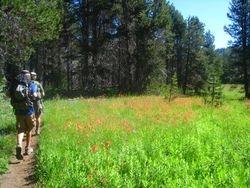Hiking at Bridalveil Falls Meadow