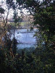 Ancient moat.