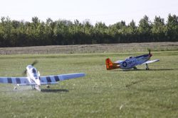 Hangar 9 Mustangs