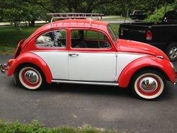 66 Beetle!