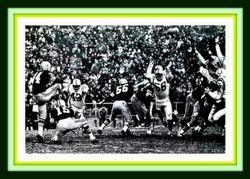 Don Chandler's 1965 field goal