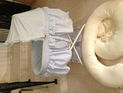 Bassinet and maternity/feeding pillow