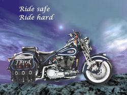 Tbird's  Harley