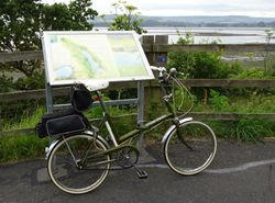 On the Exe Estuary Trail