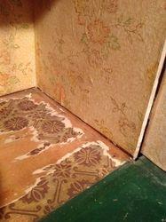 Remnants of old floor paper