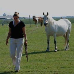 Frija, het witte paard, ik op de voorgrond