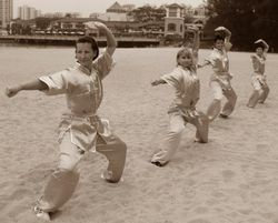 Mighty Kung Fu Adults Students