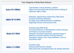 4 Categories of Brain Patterns