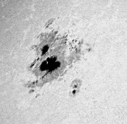 Sunspot # 69 (08-21-02)Looks like a three-leaf clover