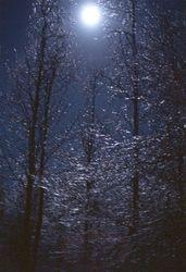 Icey Moon