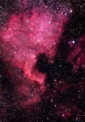 NGC 7000 (North America Nebula)