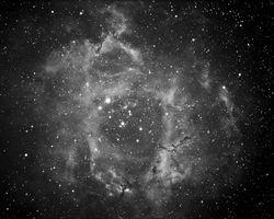 Rosette Nebula, NGC 2337-39