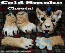 Cold Smoke Cheetah: 2011
