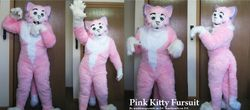 Pink kitty: 2010