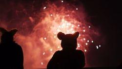 AC 2011 Fireworks