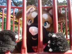 Tumble at the playground