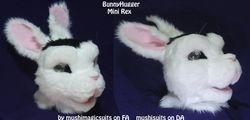 Bunny Hugger: 2011