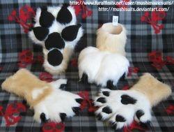 Feline Paws: 2011