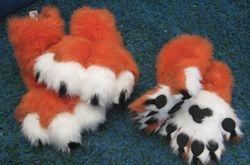 Tiger Paws: 2010