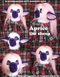 Aprice the sheep:2011