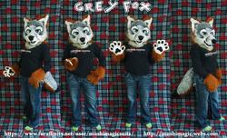 Grey fox Partial 2014