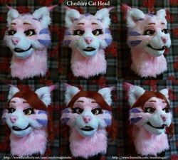 Cheshire Cat: 2012