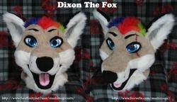 Dixon Fox: 2012